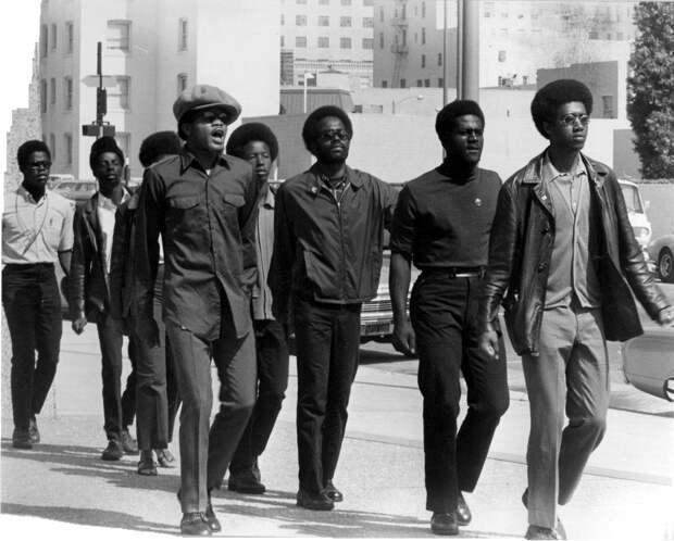 Социальные конфронтации в США 1960-х - 1970-х годов: Леворадикальная Партия черных пантер   (3)