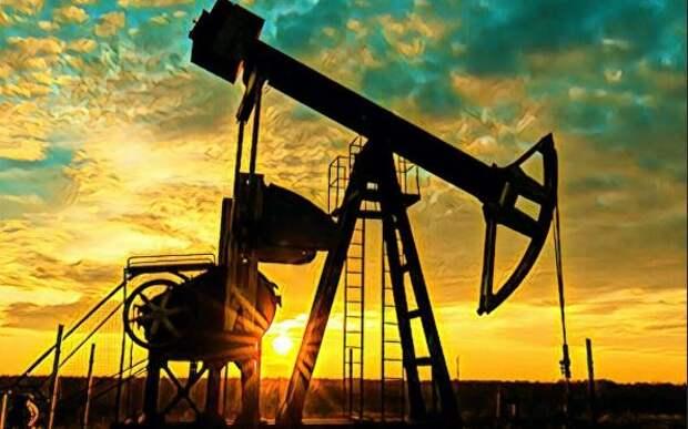 ПНС Ливии задолжал Эрдогану «черное золото»