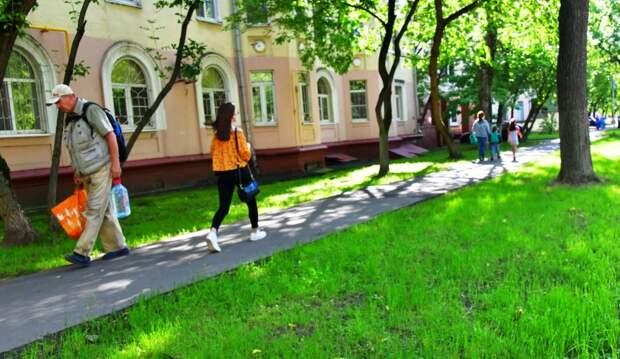 Газон на улице Судакова/Денис Афанасьев, «Юго-Восточный курьер»
