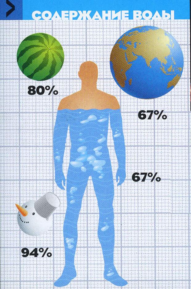 Фото №2 - Вода как воля и представление: несколько научных фактов, которые перевернут твое представление о воде