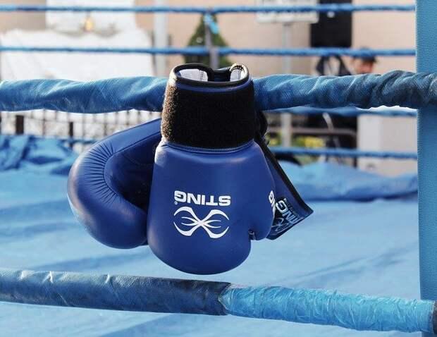 Юные боксёры сразятся за кубок главы управы Южного Тушина