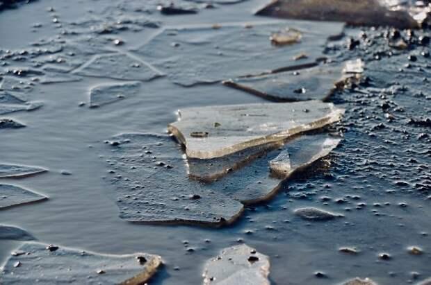 В Челябинской области с дрейфующей льдины спасены трое детей
