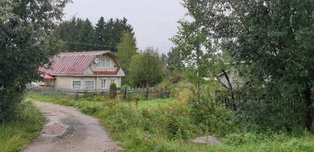 Деревня Горицы. Липецкая область