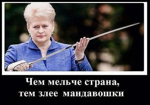 """""""Мелкое, потерявшее разум государство"""". Могучая Литва так долго бросала вызовы Китаю, что тот наконец её услышал."""