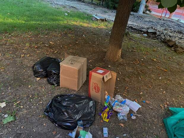 В Севастополе можно безнаказанно мусорить на улицах