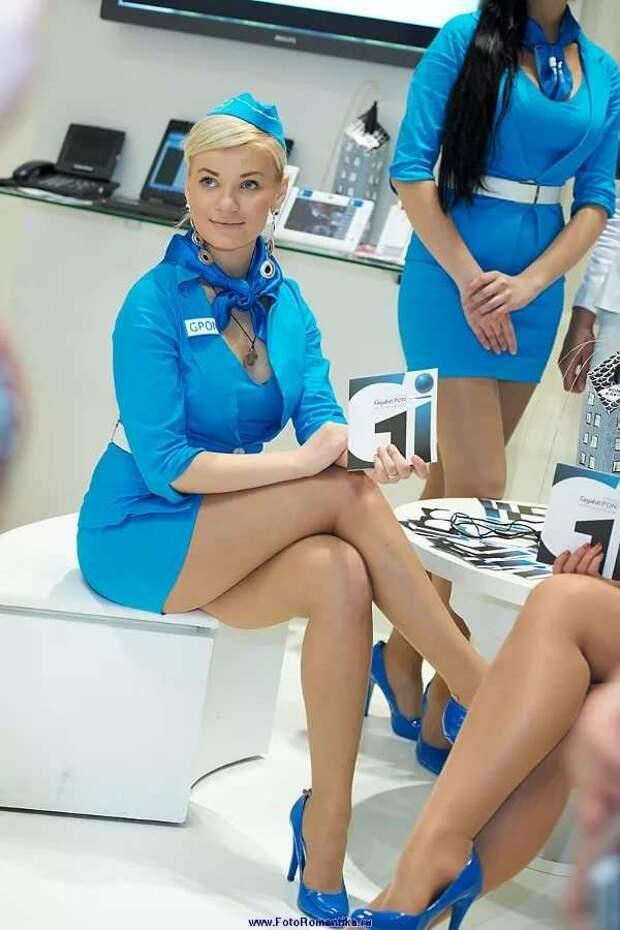 Ножки стюардесс. Подборка chert-poberi-styuardessy-chert-poberi-styuardessy-33360108022021-5 картинка chert-poberi-styuardessy-33360108022021-5