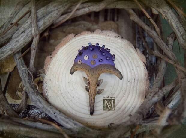 "Mandragora_root и ее ""грибочки"""