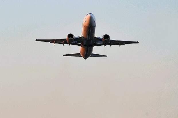 Самолет столкнулся с двумя орлами при взлете в аэропорту Варадеро