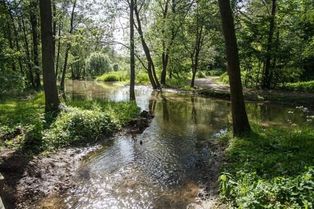 Природная территория «Кузьминки-Люблино» в ЮВАО / Фото: пресс-служба ГПБУ «Мосприрода»