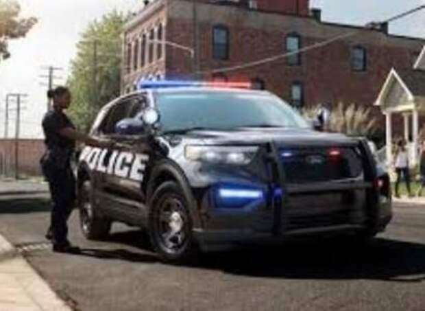 Американка вызвала полицию, перепутав секс-куклу с трупом