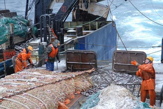 Норвегия осталась без рыбы из-за Мурманского морского порта
