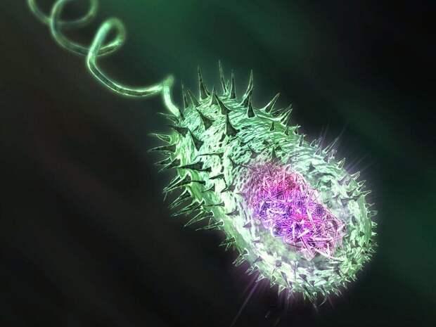 10 самых опасных бактерий в мире