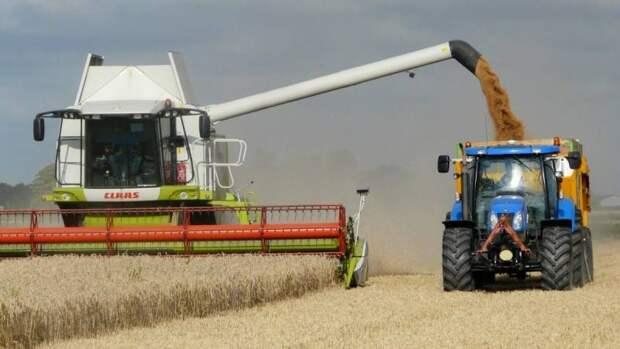 «Агрессивный экспорт»: Россия уронила цены на европейское зерно