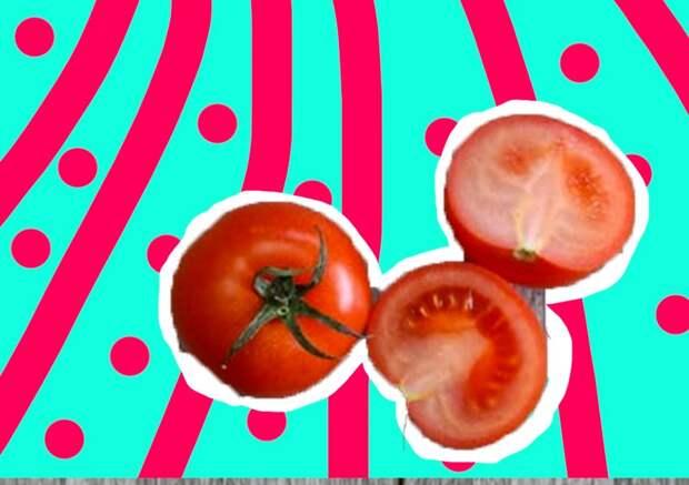 Какие помидоры лучше сажать: томатныетренды 2020