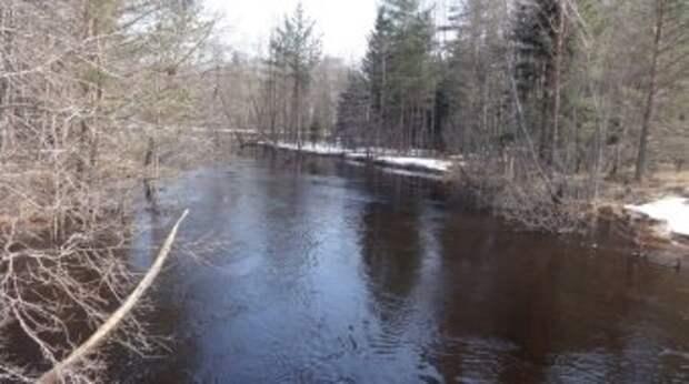 В Кадуйском районе проводится ежедневный мониторинг уровня воды в реках