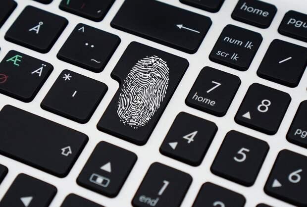 85% россиян доверяют государственным цифровым сервисам