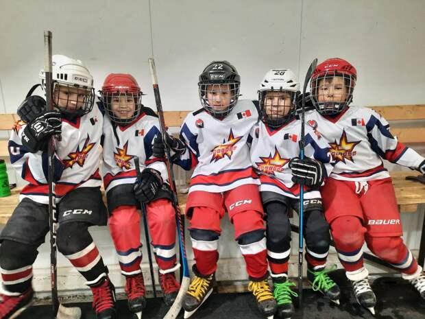 Хоккейный турнир в Вавоже закончился скандалом