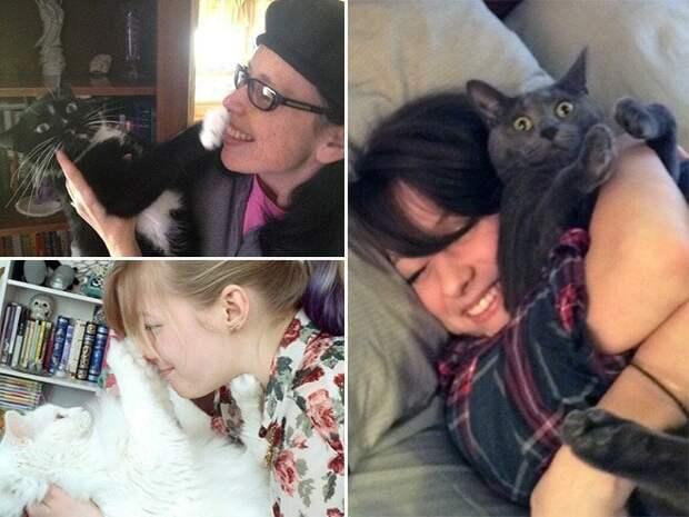 Нет! Отстань! Отпусти! 15 котов которые терпеть не могут целоваться обниматься, без кота и жизнь не та, коты и кошки, приколы, приколы с котами, смешные коты и кошки, юмор