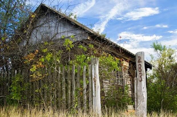 Заброшенные дачи быт, город, дача, заброшенное, пригород, садоводство, эстетика