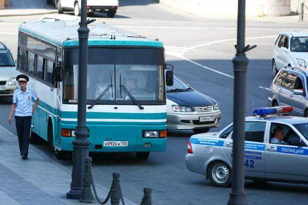 Минтранс хочет ввести бесплатный проезд в общественном транспорте