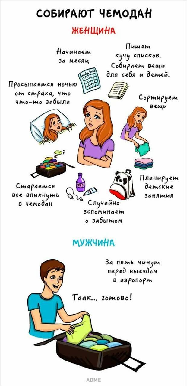 8 ярких отличий между мужчинами и женщинами