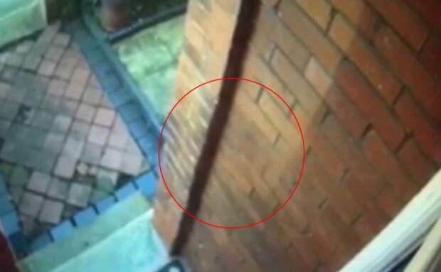 Женщина посмотрела видео с камеры наблюдения и обнаружила, что в ее дом стучалась... тень