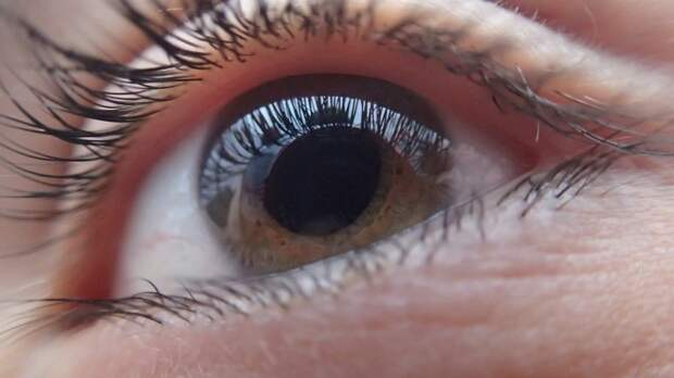 Разработан пластырь для глаз