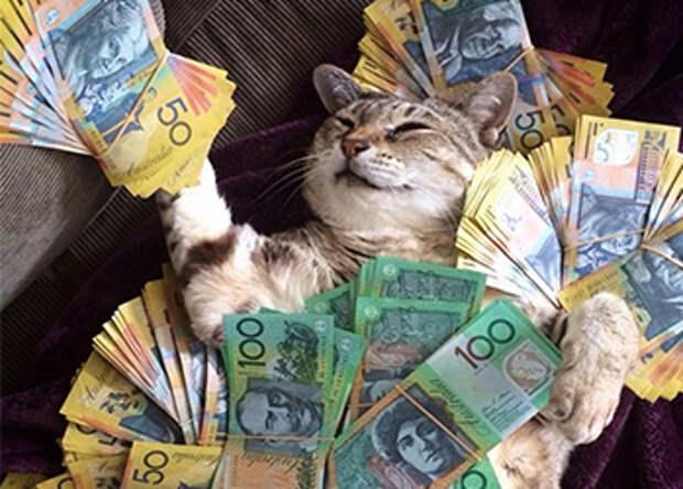 Карты, деньги, двакота