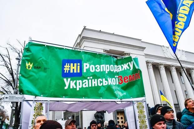 «Коронавирус – отличный повод»: эксперты озвучили подробности земельной реформы на Украине