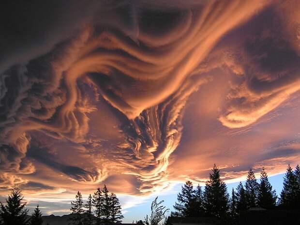 Редкие и необычные облака