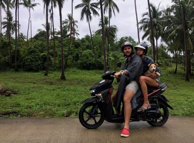 Пара туристов рискнула и подобрала больного щенка в трущобах Индии