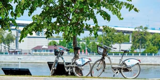 Жители Марфина смогут арендовать велосипед на сутки за пять рублей