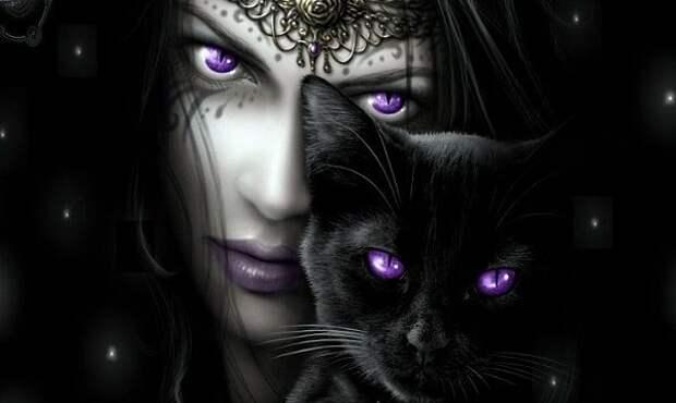 Магия животных: как кошки защищают вас от негатива