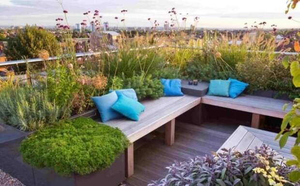 На питерских крышах появятся огороды