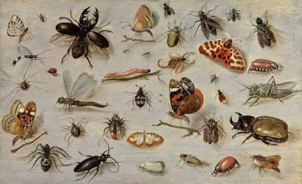Человечество может исчезнуть из-за вымирания насекомых