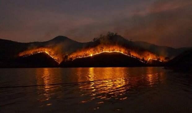 «ЯвТурции»: приморская семья устроила пожар ради красивых инста-фото