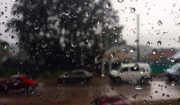 Сильные дожди сградом прогнозируют вВолгоградской области