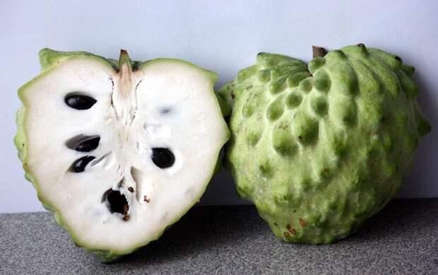 Атемойя еда, мир, необычный, путешествия, страшный, фрукты