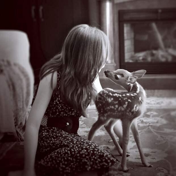 Девочка и ее олененок - история необычного питомца