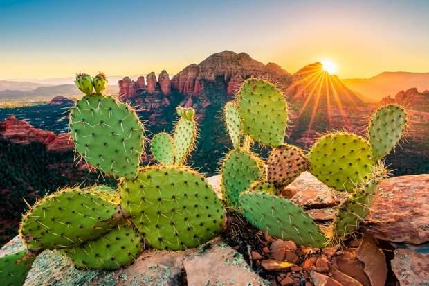 Бескрайняя Аризона на снимках Джона Ллойда