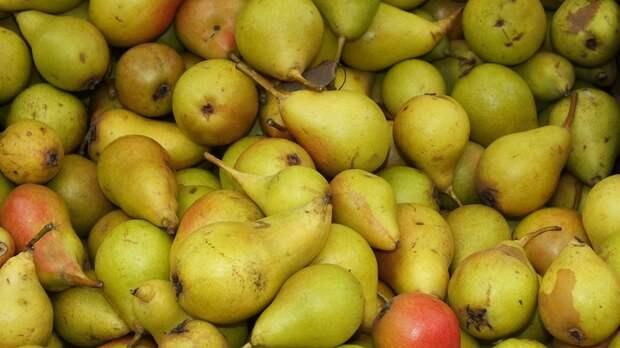 Во фруктах из Боснии и Герцеговины обнаружили опасную гниль: Россельхознадзор бьёт тревогу