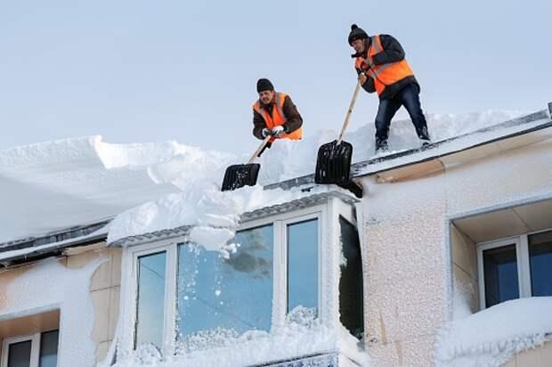 «Жилищник» и полиция спасли жителей дома на Дубнинской от потопа
