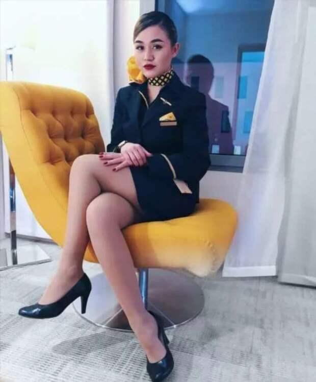 Ножки стюардесс. Подборка chert-poberi-styuardessy-chert-poberi-styuardessy-33360108022021-11 картинка chert-poberi-styuardessy-33360108022021-11