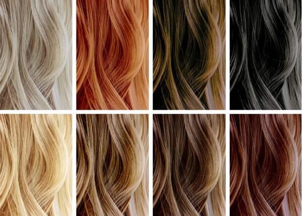 цвет волос и цвет глаз
