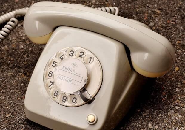 Обзор звонков в редакцию «СЗ» с 10 по 17 июня