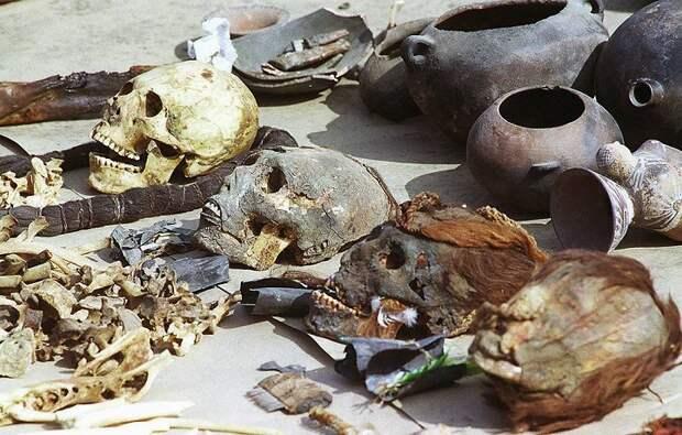 Мумии помогли археологам узнать генетическую историю инков
