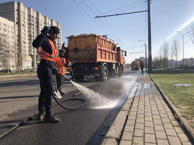 В Петербурге оценили работу по уборке улиц