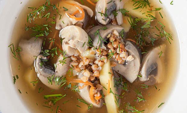 Добавили в грибной суп гречку: съедают по 2 тарелки