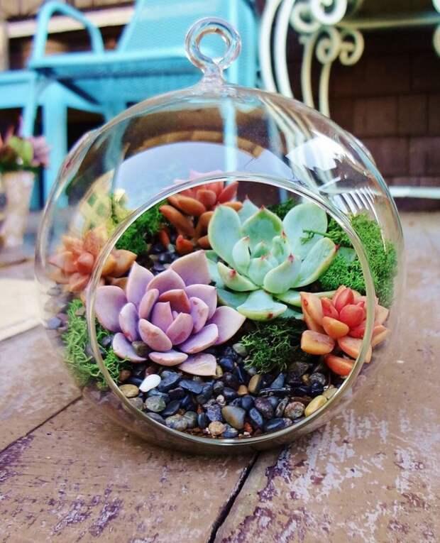 Флористический стиль «делают» мелкие детали с использованием растений, например, суккулентов