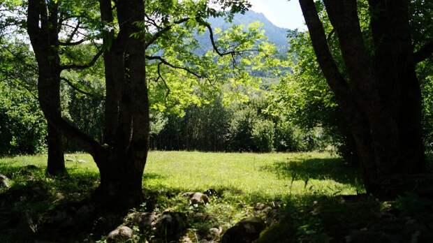 Красивейшее путешествие по Тебердинскому Заповеднику